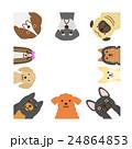 小型犬のフレーム 正方形 24864853