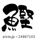 筆文字 文字 日本語のイラスト 24867103