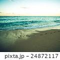 南国イメージ 24872117