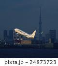羽田空港を離陸する旅客機と東京スカイツリー 24873723