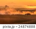 朝霧と筑波山 24874888
