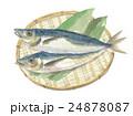 鯵 魚 青魚のイラスト 24878087