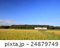 ひたちなか海浜鉄道と田んぼ 24879749