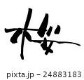 筆文字 桜.n 24883183