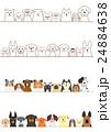 小型犬と大型犬のボーダーのセット 24884638
