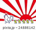 初日の出 酉 鶏のイラスト 24886142