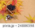 秋イメージ 24886398