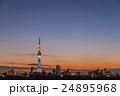 夕焼けに佇む東京スカイツリー 荒川河川敷から 24895968