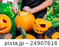 かぼちゃ カボチャ 南瓜の写真 24907616