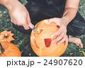 かぼちゃ カボチャ 南瓜の写真 24907620