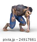 24917661