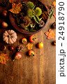 毬栗と柿と南瓜 24918790