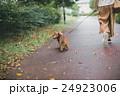 dog lover 24923006