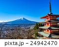 新倉山浅間公園 五重塔 富士山の写真 24942470