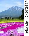 羊蹄山 蝦夷富士 芝桜の写真 24952497