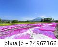羊蹄山 花畑 芝ざくら庭園の写真 24967366