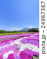 羊蹄山 花畑 芝ざくら庭園の写真 24967367