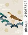 鷹 和柄 松 菊花 観世水 24967897