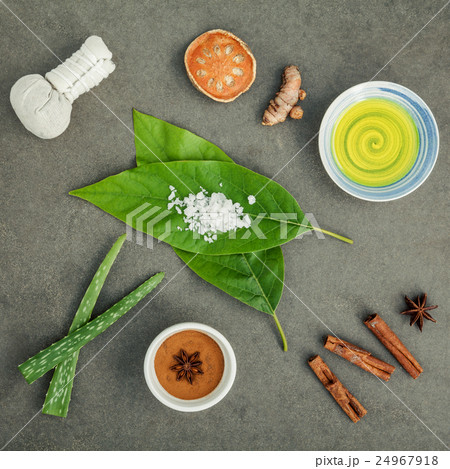 Avocados leaves with nature spa ingredients の写真素材 [24967918] - PIXTA