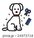犬カットする 24973718