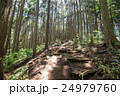 堂所山から明王峠へ・登山コース 24979760