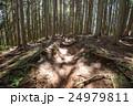堂所山から明王峠へ・登山コース 24979811
