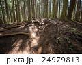 堂所山から明王峠へ・登山コース 24979813
