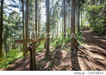 明王峠から陣馬山へ・登山コース 24979814