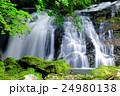 江竜田の滝(えりゅうだのたき) 24980138