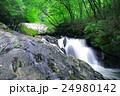 江竜田の滝(えりゅうだのたき) 24980142