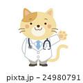 獣医 ネコ イラスト 24980791