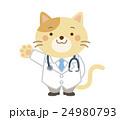 獣医 ネコ イラスト 24980793