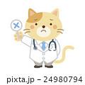 獣医 ネコ イラスト 24980794