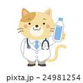 獣医 ネコ イラスト 24981254