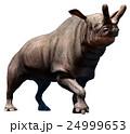 Brontotherium  24999653