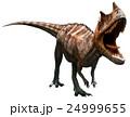 Ceratosaurus 24999655