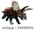 Coahuilaceratops 24999656