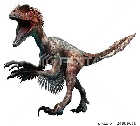 Deinonychus 24999659