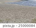 お台場海浜公園の砂浜 25000084