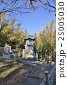 旧稲取灯台 マントル式灯台 灯台の写真 25005030