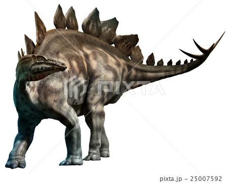 Stegosaurus 25007592