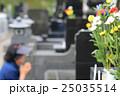 お墓参り お彼岸の供え物の菊の花 25035514