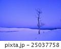 風景 冬 雪景色の写真 25037758