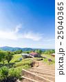 陣馬山・陣馬高原・頂上からの眺め 25040365