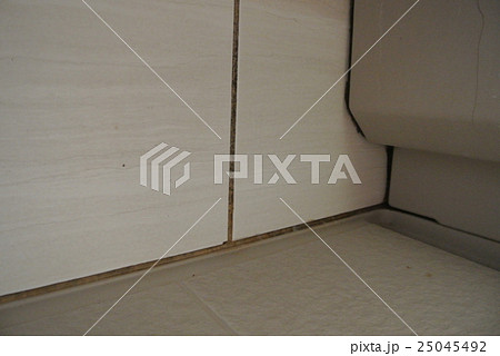 リアル!浴室のカビ 水垢 25045492