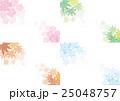 春夏秋冬 背景 背景素材のイラスト 25048757