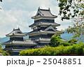 松本散歩:国宝 松本城 25048851