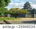 松本散歩:国宝 松本城 25049234