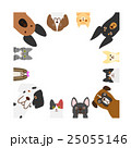 犬と猫のフレーム 正方形 25055146
