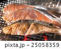 鮭 25058359